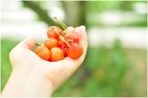12-11 体を温める食べ物_02