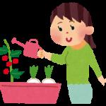 一人暮らしにピッタリ!ベランダ菜園で新鮮野菜を手に入れよう!